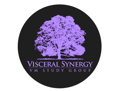 Vmstudygroupv3purple396x300